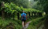 Read the Reid: The Camino Walk