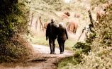 Nature Walk at Sheskinmore