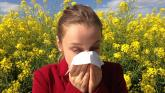 Hay Fever season is here! Use these top tips to survive the months ahead
