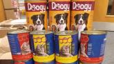 'Dog food' tins of tobacco among the €150k seizures destined for addresses across the country