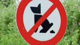 Dog fouling is a scourge in areas says councillor