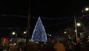 Carndonagh Christmas Tree
