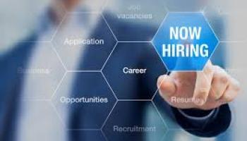 16.5% increase in job postings in Donegal during 2020