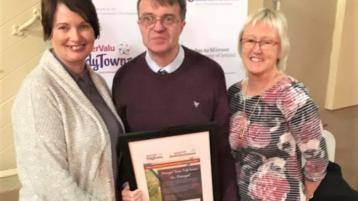 Tidy Towns recognition for Donegal community's enhancement of a beautiful natural amenity