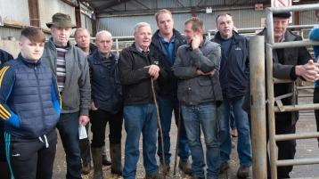 GALLERY: Annual Raphoe Mart Fatstock Show and Sale