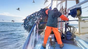 Donegal deputy calls for supports to be put in place for the fishing sector