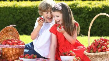 A sign that summer is coming - celebrate the strawberry season
