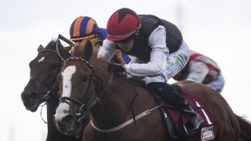 Donegal jockeys continue their winning ways at Galway and Leopardstown