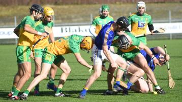 Donegal hurlers made fight all the way to get better of Longford