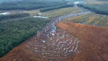 Sinn Féin call on wind farm company in Donegal to permanently cease activities at the  Meenbog site