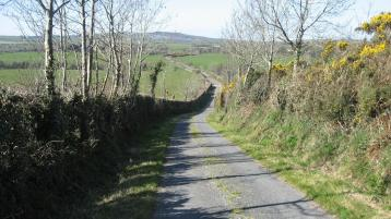 Donegal's hedge-cutting season comes to an end on Sunday week