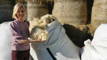Offaly minister seeks contractors for 'wool feasability study'