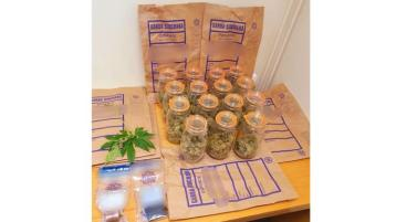 Donegal gardaí seize €17,300 worth of suspected cannabis herb in Ramelton