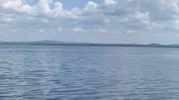 Watch: Dolphins continue to book their holidays in Donegal