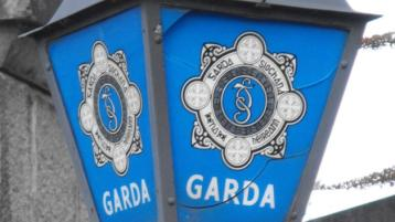 Gardai recover ten dogs - and issue appeal to trace owners