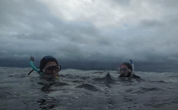 Donegal divers explore Melmore Head