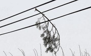Met Éireann warns of high winds in Donegal