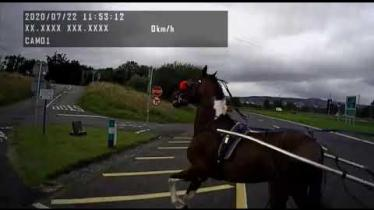 WATCH: Dramatic footage as van collides with horse and cart outside Letterkenny