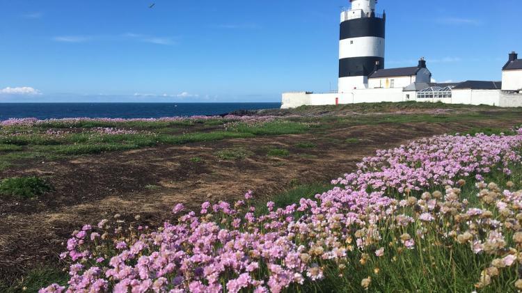JOBS ALERT: Fancy painting lighthouses around the coast of Ireland?